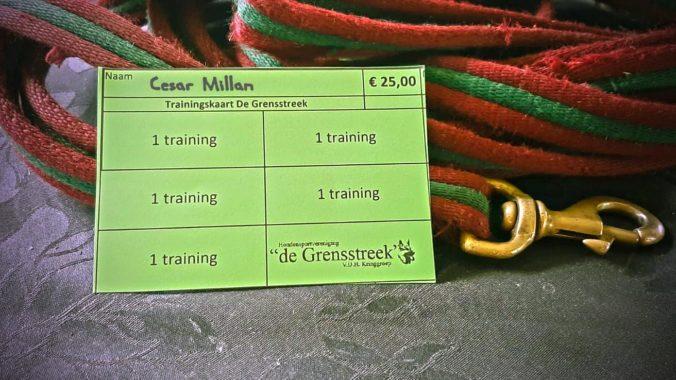 trainingskaart